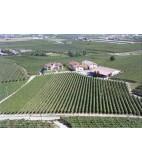 Halvflaske: 2013 Monastero, Passito Bianco, Monte del Fra, 37,5 cl